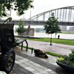 Tagesausflug: Arnhem mit Kröller-Müller Museum