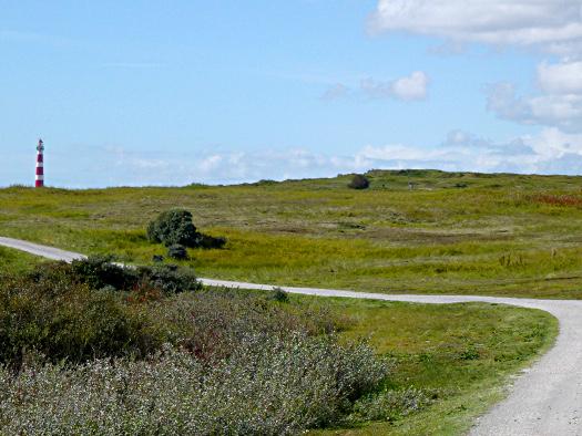 Ameland: Radweg zum Leuchtturm