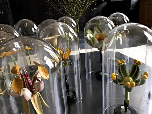 Flower Power im Museum Oud Amelisweerd