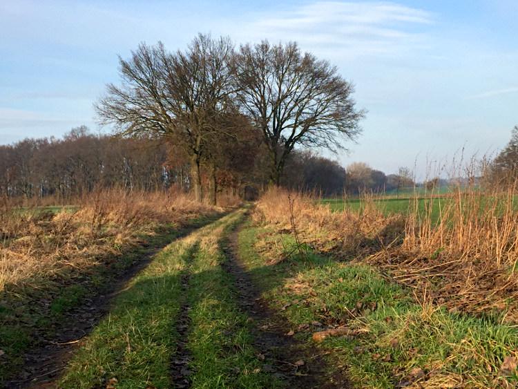 Wege über Land