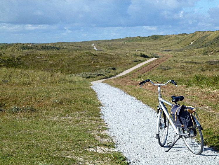 Fahrradweg in den Dünen
