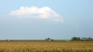 Polderlandschaft auf Texel