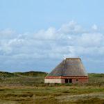 Schafstall Texel De Koog